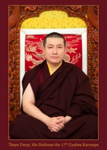 17th-karmapa-photo-official-357x500
