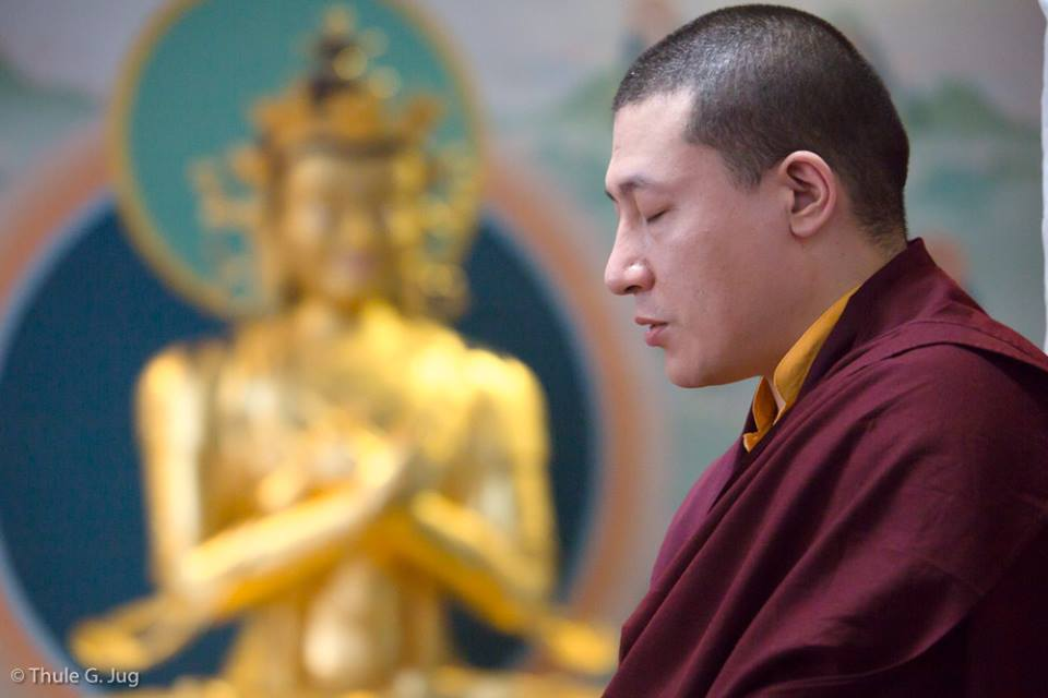 XVI Karmapa in prayer
